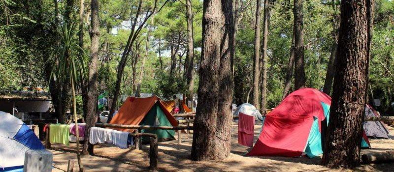 9 Campings en Villa Gesell (Buenos Aires) ¡Precios y Teléfonos!