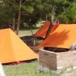 Carpas naranjas casa blanca argentina