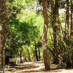 Parque argentina